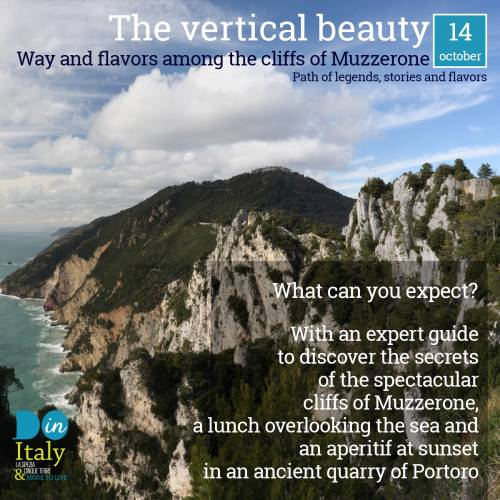 The vertical beauty